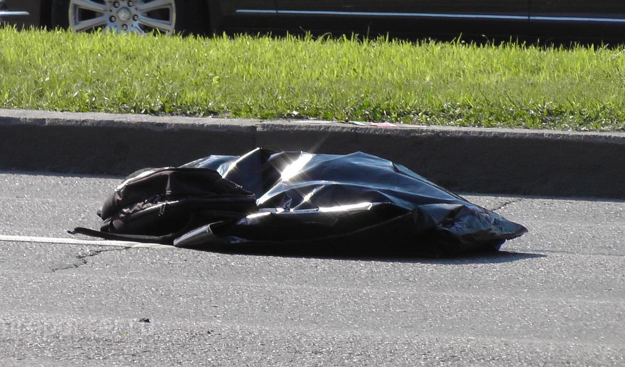 QIP Shot Screen 342 Мотоциклист насмерть сбил девушку пешехода в Москве на Ленинском проспекте
